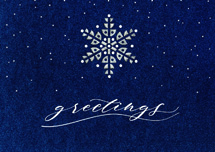Starry Indigo Holiday Cards